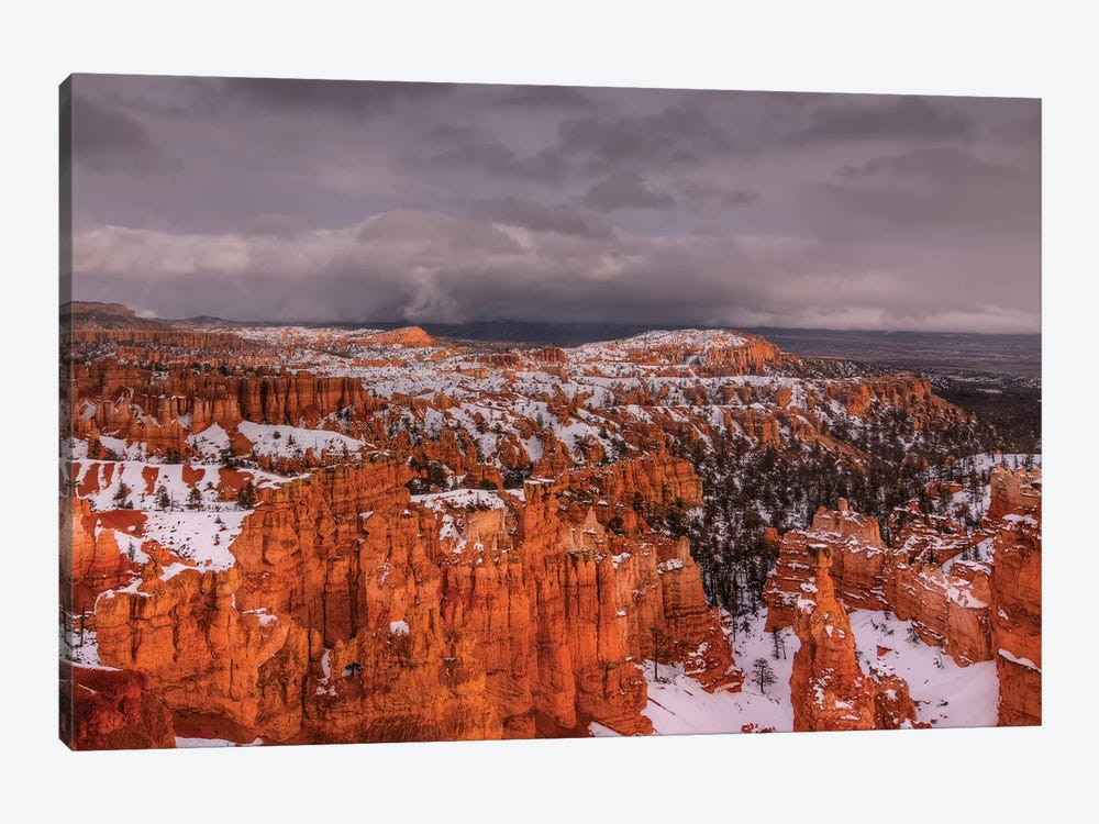 Storm Over Bryce Canyon 1-piece Canvas Wall Art