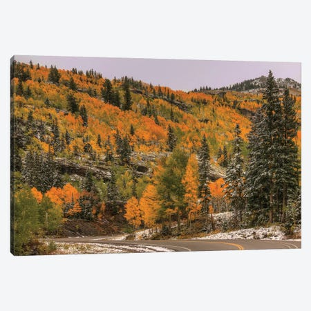 Switchback Autumn Canvas Print #SHL201} by Bill Sherrell Canvas Print