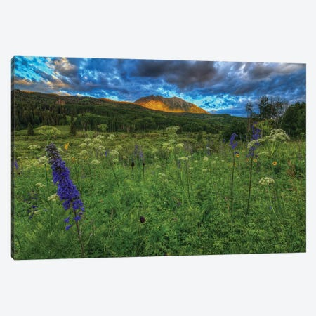 The Dawning Of Majesty Canvas Print #SHL205} by Bill Sherrell Canvas Artwork
