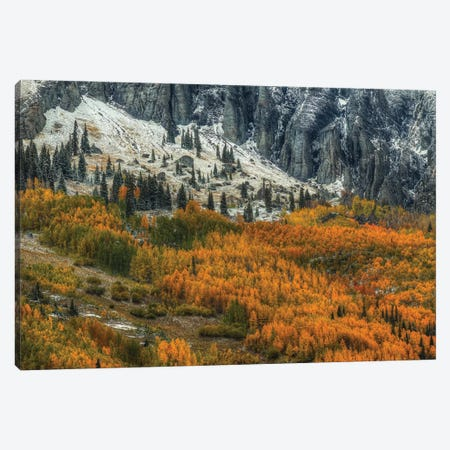 The Fragile And The Strong Canvas Print #SHL207} by Bill Sherrell Canvas Artwork