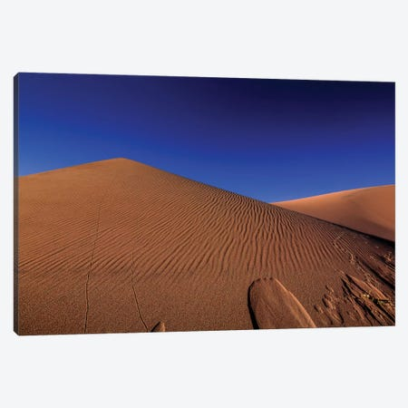 The Great Sand Dunes National Park Canvas Print #SHL208} by Bill Sherrell Art Print
