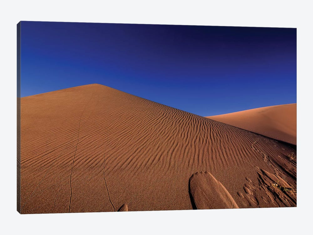 The Great Sand Dunes National Park by Bill Sherrell 1-piece Canvas Print