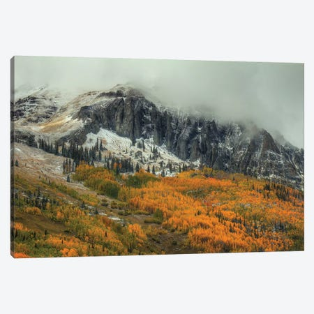 The Mighty And The Fragile Canvas Print #SHL211} by Bill Sherrell Canvas Art