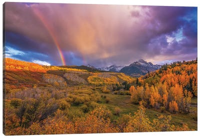 The Real Gold Of Colorado! Canvas Art Print