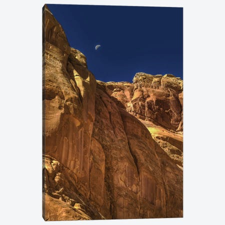 Towering Moon Canvas Print #SHL220} by Bill Sherrell Art Print
