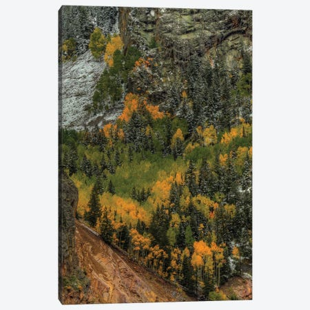Vertical Autumn Wall Canvas Print #SHL224} by Bill Sherrell Canvas Wall Art