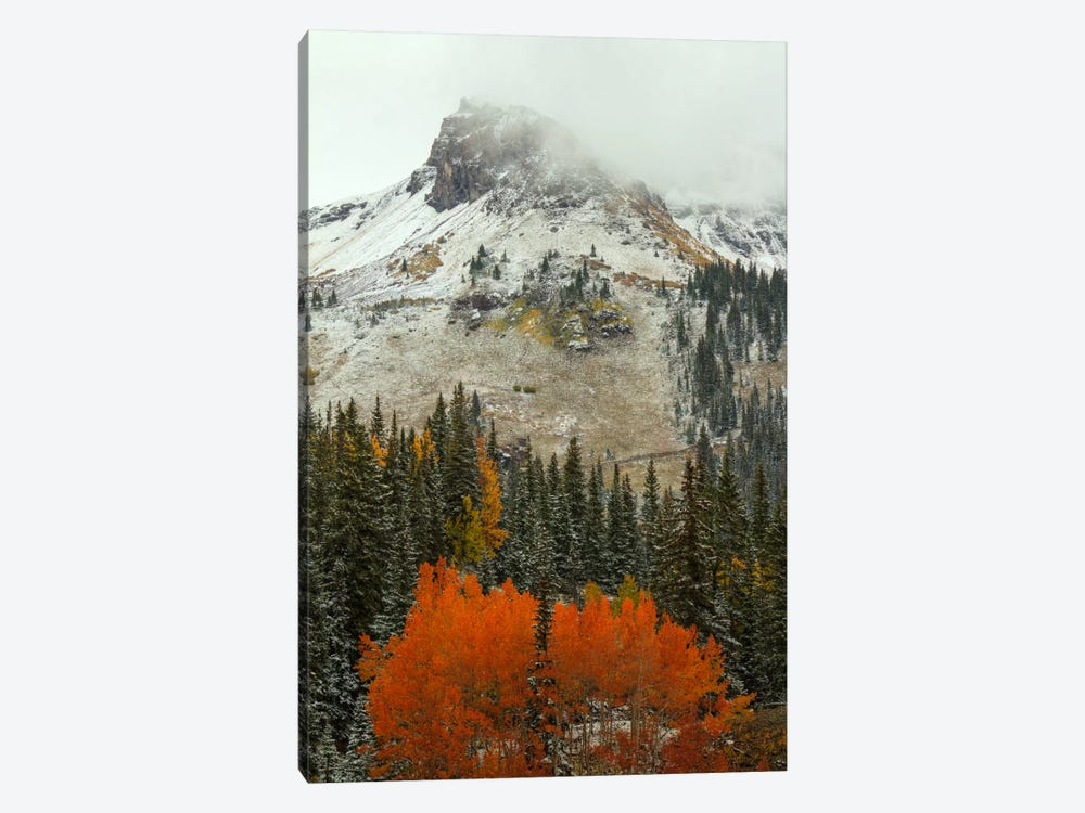 An Epiphany Of Red-Orange by Bill Sherrell 1-piece Canvas Print