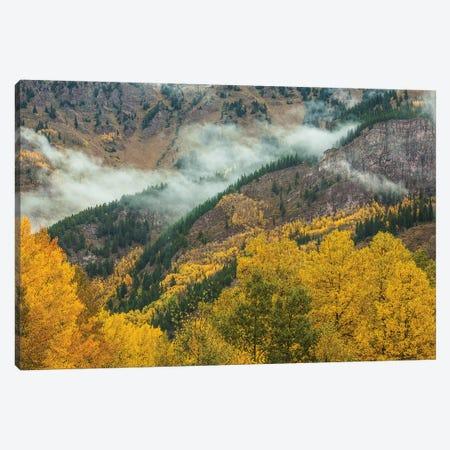 Autumn Creation Canvas Print #SHL243} by Bill Sherrell Art Print
