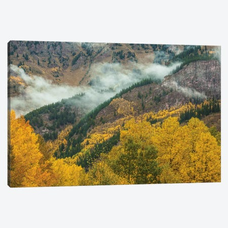 Autumn Creation Canvas Print #SHL243} by Bill Sherrell Art Print