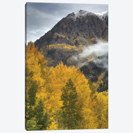 Autumn Moods Canvas Print #SHL244} by Bill Sherrell Canvas Art