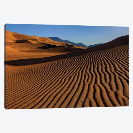 Pebble On A Sand Dune Canvas Print #SHL265} by Bill Sherrell Canvas Art