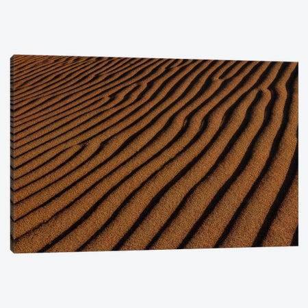 Sand Ripples Canvas Print #SHL267} by Bill Sherrell Canvas Artwork