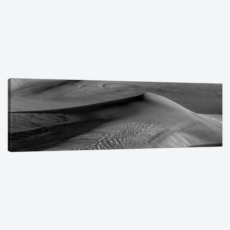 Shaped By The Wind in Black & White Canvas Print #SHL269} by Bill Sherrell Art Print