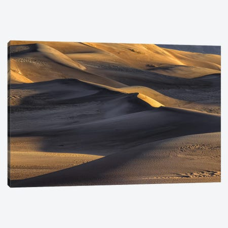 The Great Dunes Canvas Print #SHL272} by Bill Sherrell Canvas Artwork