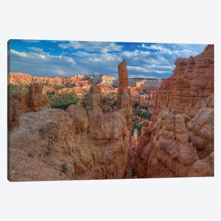 A Journey Through Bryce Canyon Canvas Print #SHL275} by Bill Sherrell Art Print