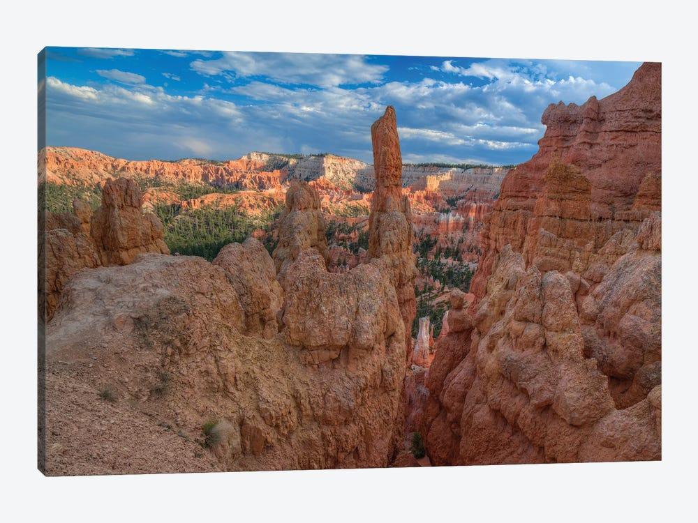 A Journey Through Bryce Canyon by Bill Sherrell 1-piece Art Print
