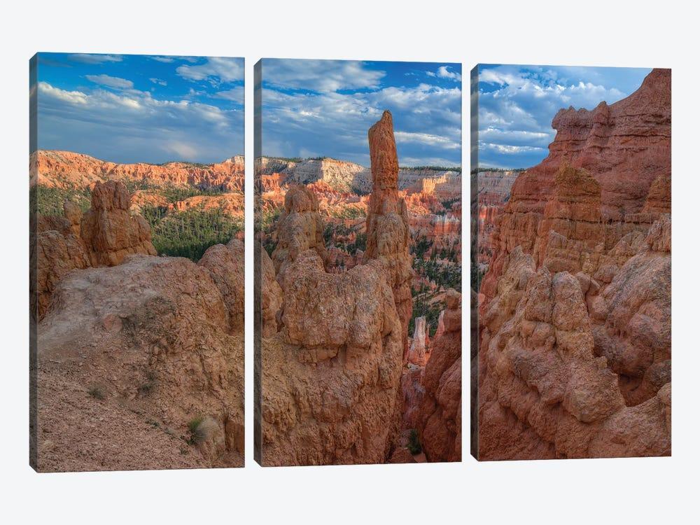 A Journey Through Bryce Canyon by Bill Sherrell 3-piece Canvas Art Print