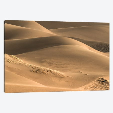 Dunes And Light Canvas Print #SHL284} by Bill Sherrell Canvas Artwork