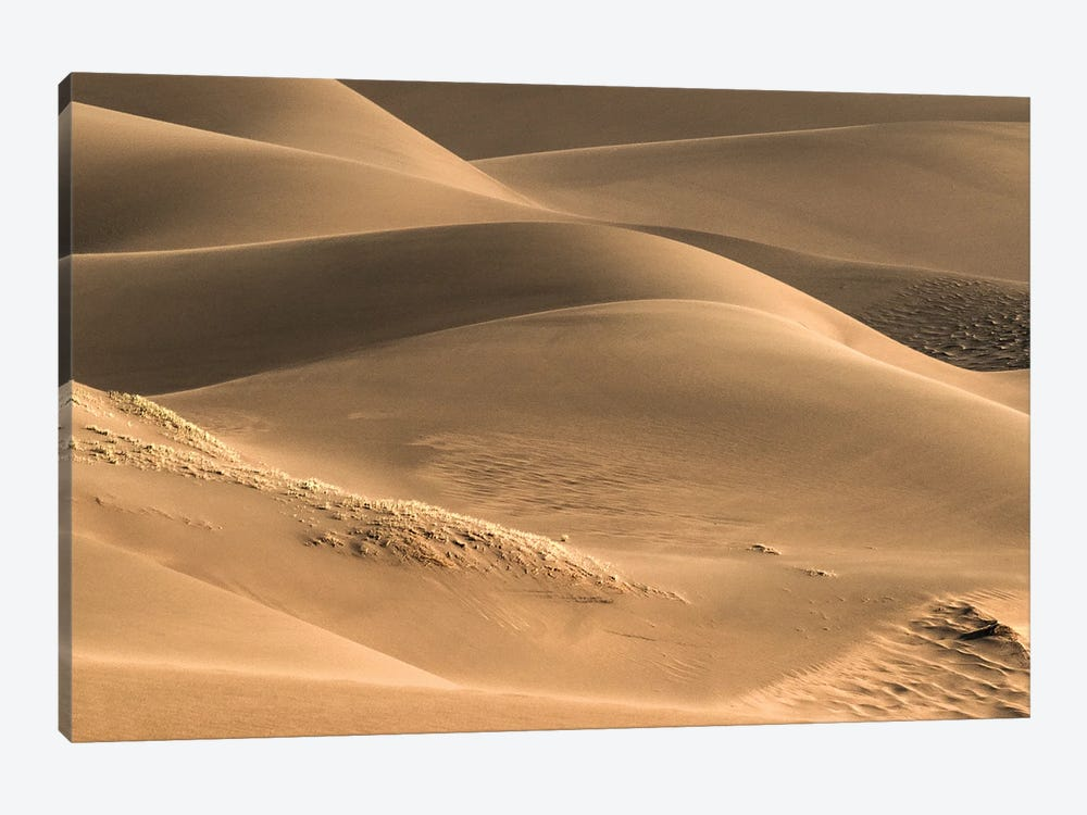 Dunes And Light by Bill Sherrell 1-piece Canvas Print