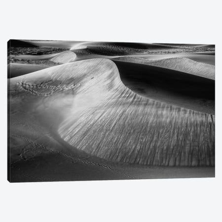 Wind Sculpting Canvas Print #SHL305} by Bill Sherrell Canvas Art Print