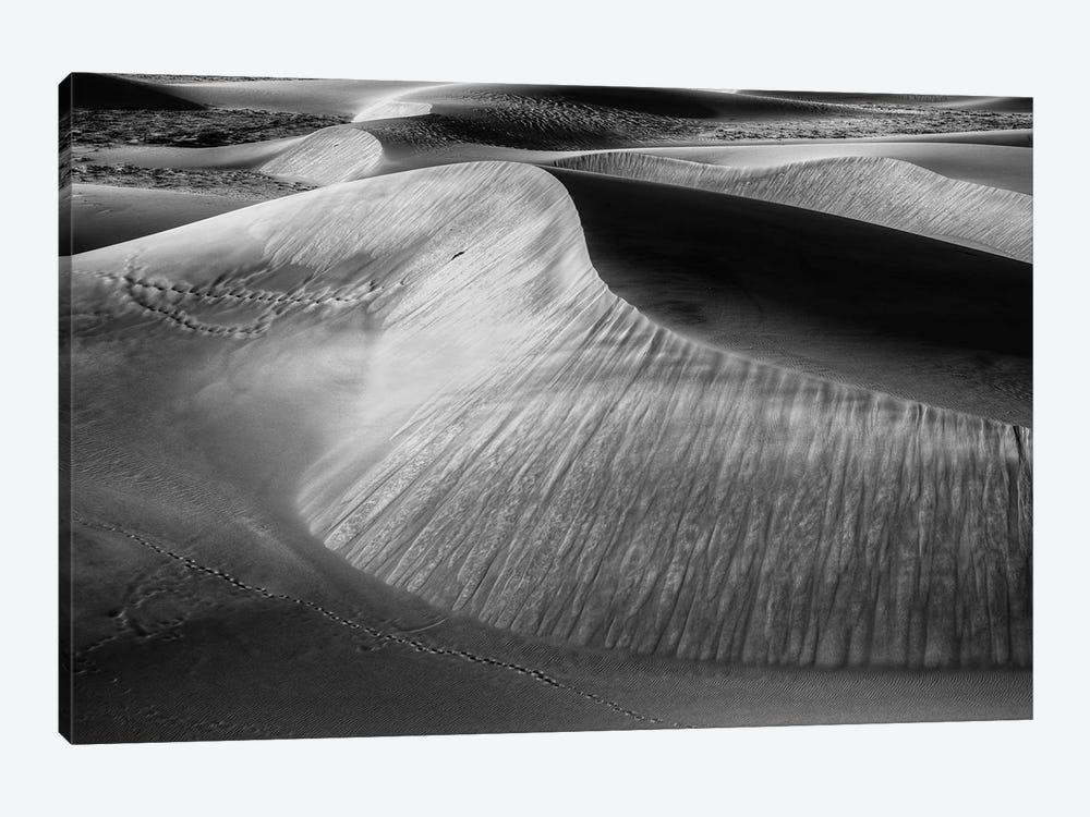 Wind Sculpting by Bill Sherrell 1-piece Canvas Print