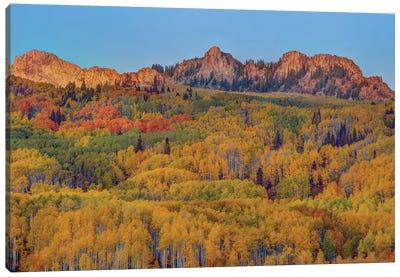 Last Rays Over An Autumn Showcase Canvas Art Print