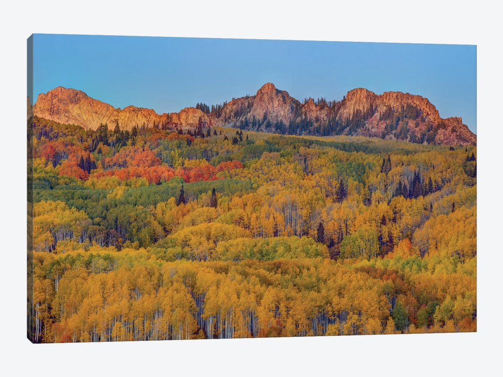 Last Rays Over An Autumn Showcase by Bill Sherrell 1-piece Canvas Art