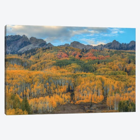 Autumn Showcase II Canvas Print #SHL316} by Bill Sherrell Canvas Wall Art