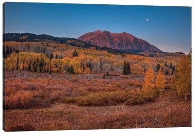 East Beckwith Mountain-Colorado Canvas Art Print