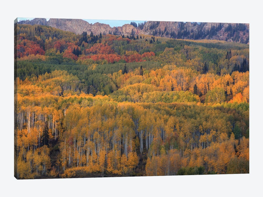 The Abounding Colors Of Autumn by Bill Sherrell 1-piece Canvas Art Print