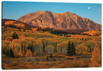 Autumn Sunrise Over East Beckwith Mountain Canvas Art Print
