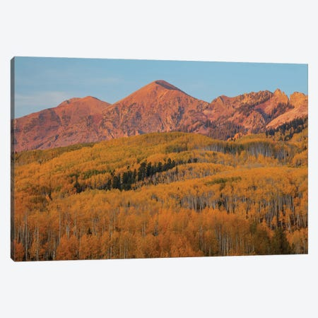 Majestic Autumn Canvas Print #SHL336} by Bill Sherrell Canvas Wall Art