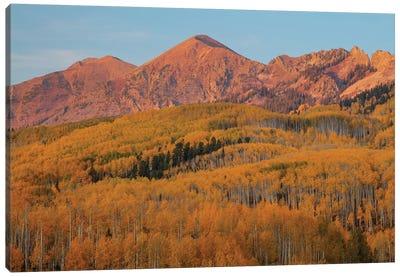 Majestic Autumn Canvas Art Print