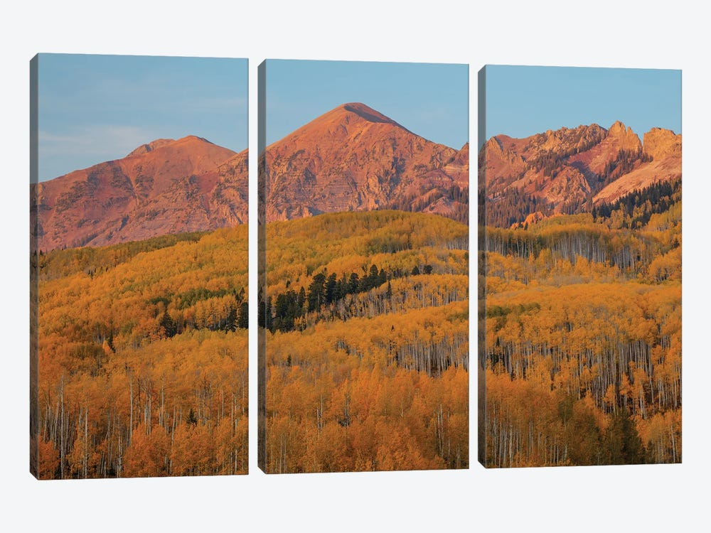 Majestic Autumn by Bill Sherrell 3-piece Art Print