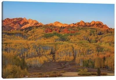 Fall Into Autumn Canvas Art Print