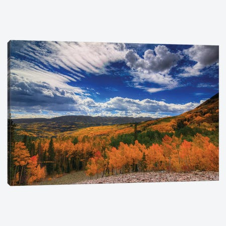 Aspen Wildfire At Ohio Pass Canvas Print #SHL34} by Bill Sherrell Canvas Wall Art
