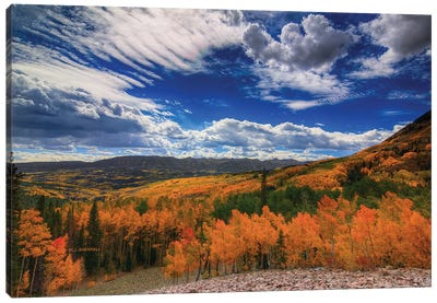 Aspen Wildfire At Ohio Pass Canvas Art Print
