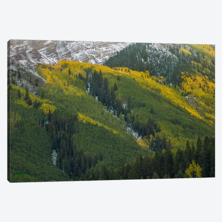 Autumn Angles Canvas Print #SHL35} by Bill Sherrell Canvas Wall Art