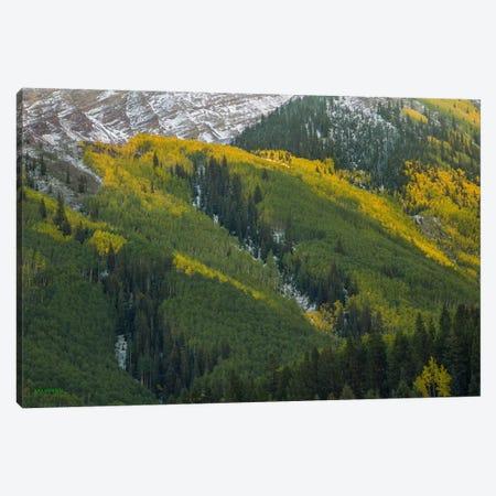 Autumn Angles Canvas Print #SHL35} by Bill Sherrell Canvas Wall Art