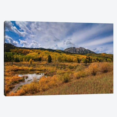 Autumn Blaze Canvas Print #SHL38} by Bill Sherrell Canvas Art Print