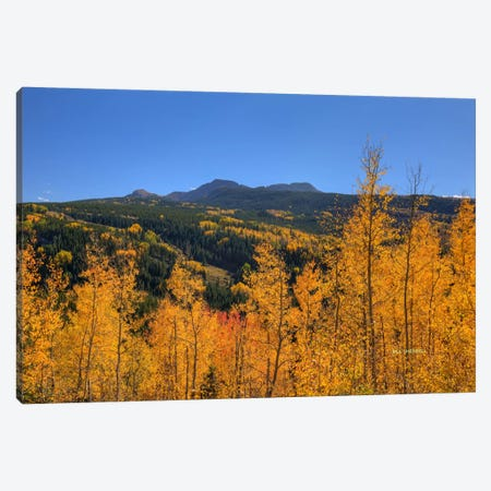 Autumn Bonfire Canvas Print #SHL39} by Bill Sherrell Canvas Print