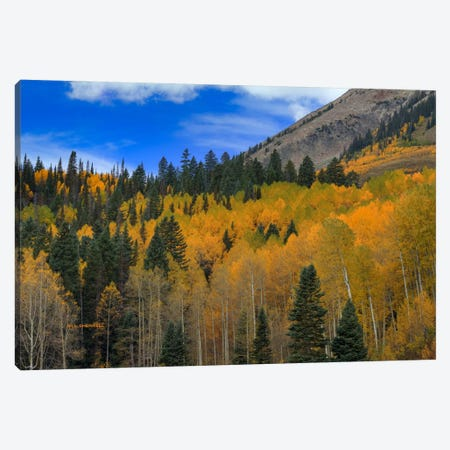 Autumn Dream Canvas Print #SHL42} by Bill Sherrell Canvas Art