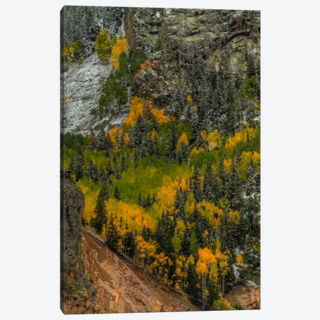Autumn Grace Canvas Print #SHL47} by Bill Sherrell Canvas Art Print