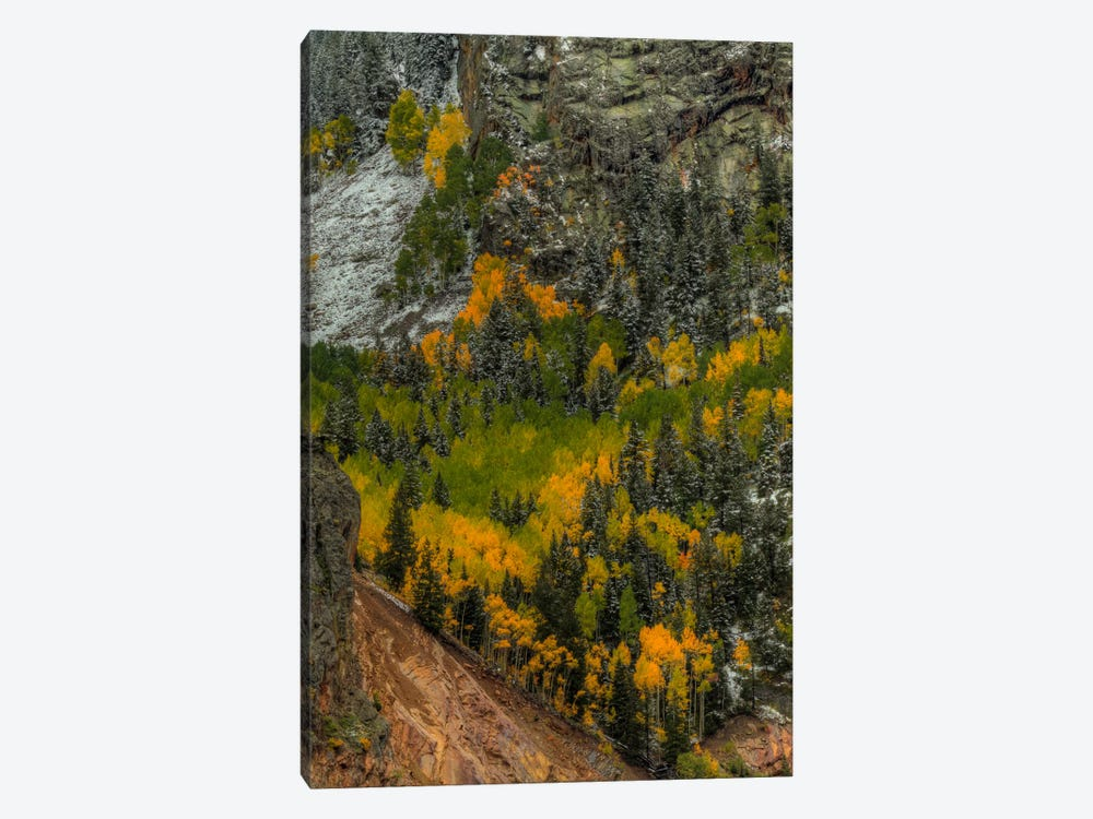 Autumn Grace by Bill Sherrell 1-piece Canvas Artwork