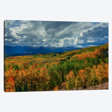 Autumn Illumination Canvas Print #SHL48} by Bill Sherrell Canvas Wall Art