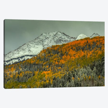 Autumn Mountain Canvas Print #SHL50} by Bill Sherrell Canvas Art Print