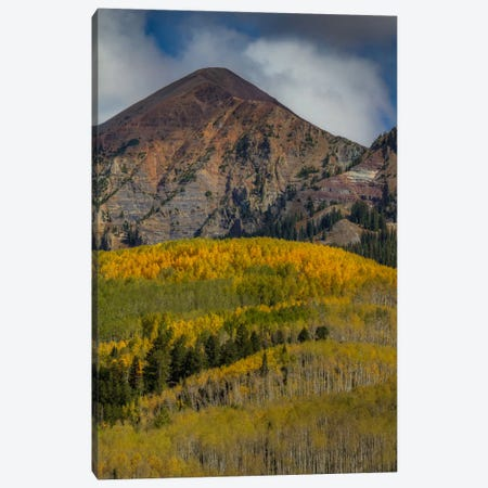 Autumn Mountain Near Crested Butte Canvas Print #SHL51} by Bill Sherrell Canvas Art Print