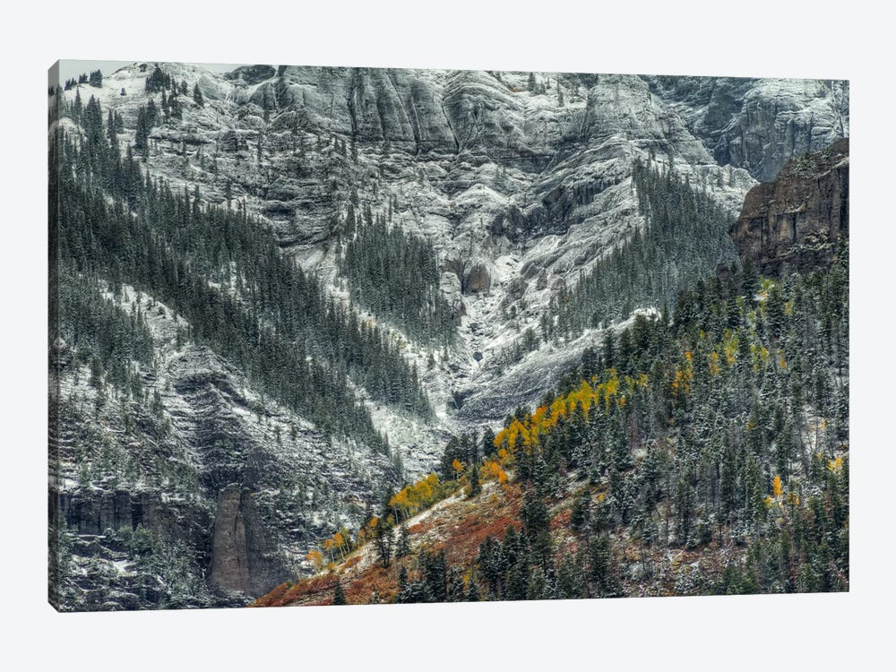 Autumn Slice And Majestic Delineation by Bill Sherrell 1-piece Art Print