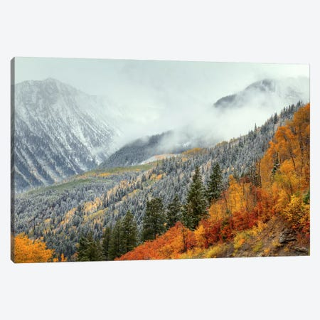 Autumn Storm Canvas Print #SHL55} by Bill Sherrell Canvas Wall Art