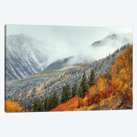 Autumn Storm Canvas Print #SHL55} by Bill Sherrell Canvas Wall Art